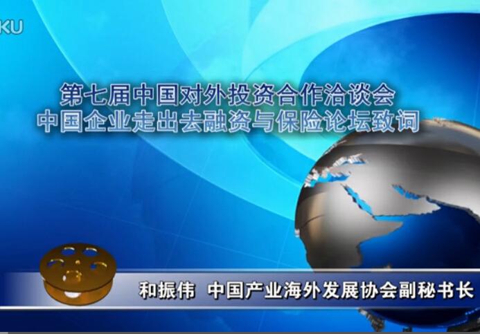 和振伟--中国企业走出去融资与保险论坛致词