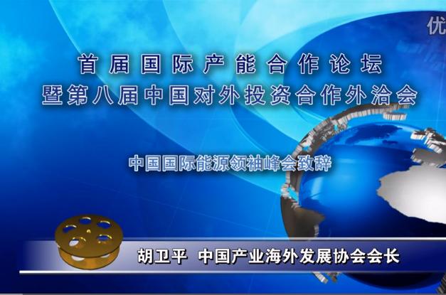 胡卫平--中国国际能源领袖峰会致辞