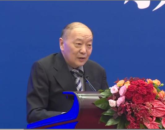 中国产业海外发展协会会长胡卫平致辞