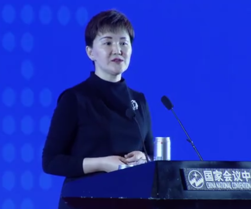 林睿琦--第九届中国对外投资合作洽谈会演讲