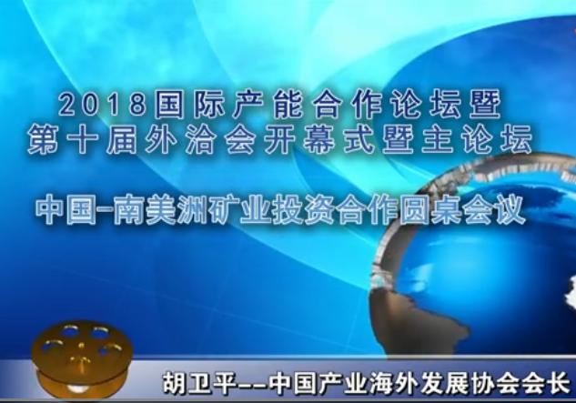 胡卫平--中国-南美洲矿业投资合作圆桌会议