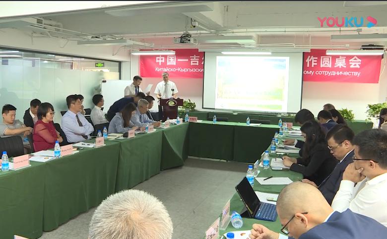 王德平--中国—吉尔吉斯斯坦农产品销售平台的建立运营
