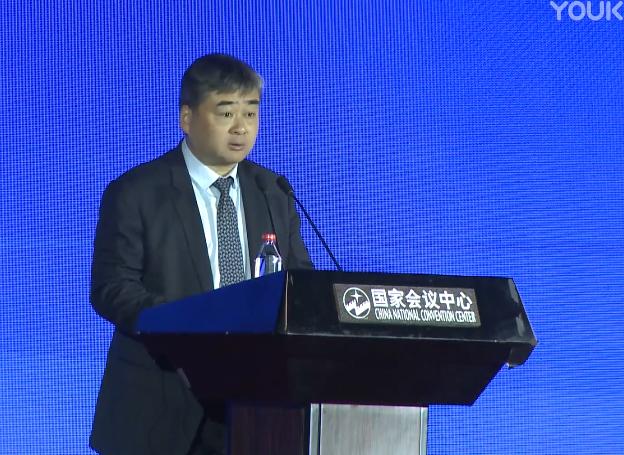 吴胜卫--第十一届中国对外投资合作洽谈会演讲